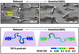 Smart Flesh can stretch and fold
